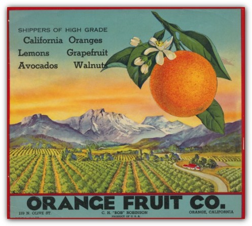 OrangeFruitShippingLabel